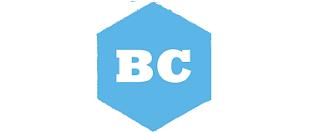 bluchip solutions logo